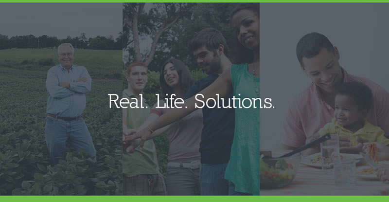 Real Life Solutions Collage